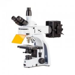 Microscop iScope Euromex IS.3153-PLFi/6, trino