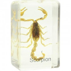 Preparat Scorpion