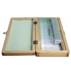 Set preparate 40 de bucati in cutie de lemn