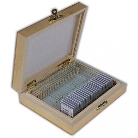 Set preparate 100 de bucati in cutie de lemn